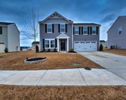 3 Maplestead Farms Court, Greenville image