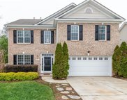 13034 Fenceline  Drive, Charlotte image