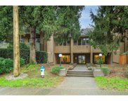 33400 Bourquin Place Unit 201, Abbotsford image