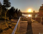 161 Whiskey Hill Rd, Lopez Island image