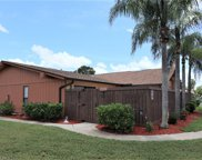 17318 Birchwood  Lane, Fort Myers image