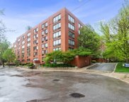 1169 South Plymouth Court Unit 119, Chicago image