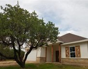 307 Kintail Dr, Spicewood image