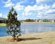 38 Spring Beauty  Drive, Bluffton image