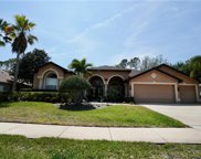 4474 Rockwood Drive, Palm Harbor image