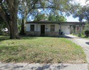 3007 Chipco Street, Tampa image