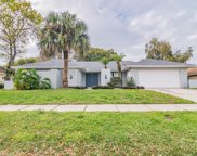 2434 Old Coach Trail, Clearwater image