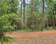 20739  You Bet Road, Grass Valley image