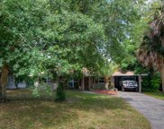 1175 Holly Drive, Mount Dora image