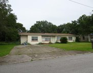 8714 N Wick Place, Tampa image
