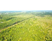 113 Acres Okelly Drive, West Suffolk image