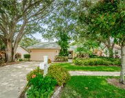 4815 Orange Grove Way, Palm Harbor image