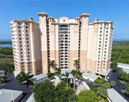 1001 Arbor Lake Dr Unit 1008, Naples image