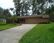 18822 Tracer Drive, Lutz image