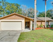3746 Sapphire Court, Mulberry image