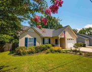 431 Griffin Road, Greenville image