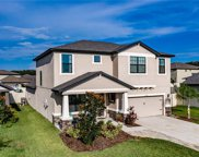 12020 Creek Preserve Drive, Riverview image
