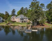 617 Webster Pointe Drive, Chapin image