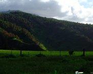 65-889 Kaukonahua Road, Waialua image