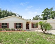 14305 Brentwood Drive, Tampa image