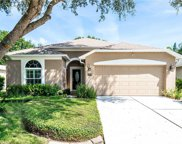 13043 Heming Way, Orlando image