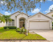 10905 Archdale Court, Tampa image