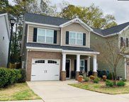 334 Forest Green Drive, Columbia image