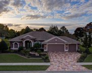 3377 Indian River Street, Spring Hill image
