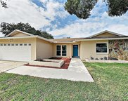4117 Summerdale Drive, Tampa image