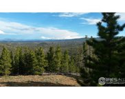 807 Flathead Dr, Red Feather Lakes image