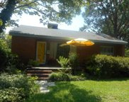602 Jones Avenue, Kinston image