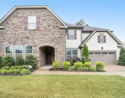 11530 Sweet Birch  Lane, Charlotte image