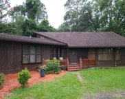 3220 RIVER RD, Green Cove Springs image