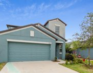 10031 Rosemary Leaf Lane, Riverview image
