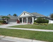11748 Newberry Grove Loop, Riverview image
