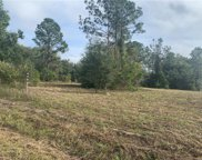 Lot 1 N Cherry Lake Groves Road, Groveland image