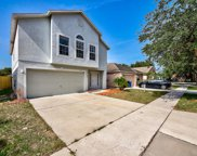 11506 Ivy Flower Loop, Riverview image
