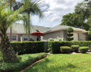 168 Steeplechase Lane, Palm Harbor image