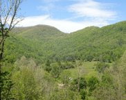 Rustling Woods Trail, Cullowhee image