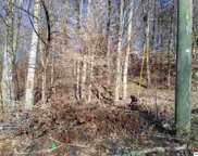 Lot 77 Muscadine Ct, Sevierville image