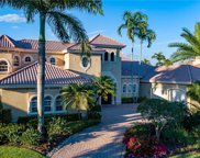 8659 Blue Flag Way, Naples image
