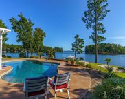 885 Island Point Lane, Chapin image