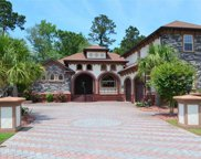 304 Bunny Trail Ct., Myrtle Beach image