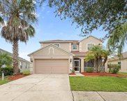 4212 Hartford Lake, Tampa image