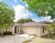 16608 Green Maze Ln, Helotes image