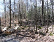 Cooley Mountain  Road, Liberty image