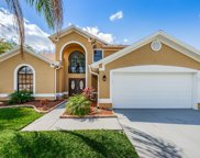 13504 Galena Place, Tampa image