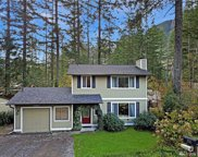 42769 SE 173rd Place, North Bend image