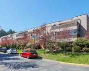 444 W 49th Avenue Unit 206, Vancouver image