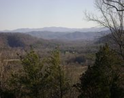 Tellico Camp Rd, Madisonville image